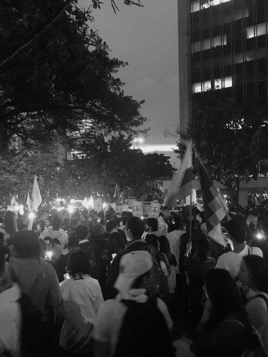 Photo. 4. Marcha por la Paz. (Carrera 7, Bogotá, 5 October 2016). Natalia Angel.